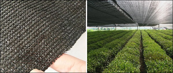 Privacy Protection Net 150g 3m WIDE PRIVACY SHADE NETTING GREENHOUSE SHADE NET